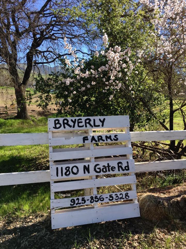 BRYERLY Sign on N Gate Road